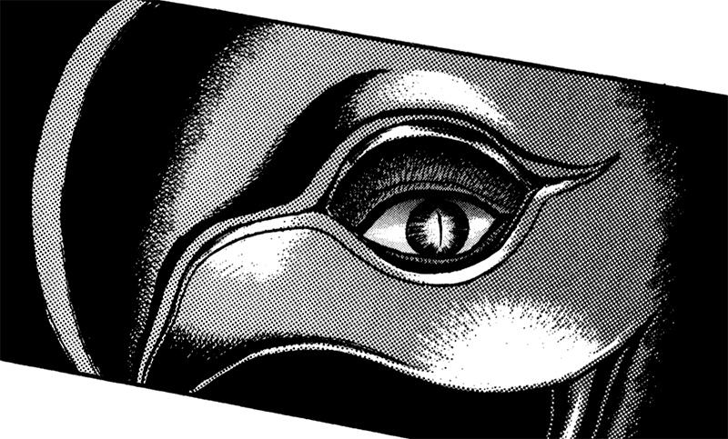 Femto-eye.jpg